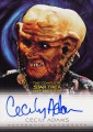 The Complete Star Trek Deep Space Nine Trading Card A19