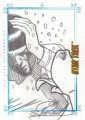 Star Trek The Original Series Art Images Trading Card Sketch This Side of Paradise