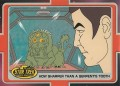 The Complete Star Trek Animated Adventures Trading Card 185