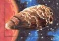Star Trek Aliens Chris Meeks Sketch Card