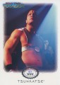 Star Trek Voyager Tsunkatse Archive Collection Trading Card T4